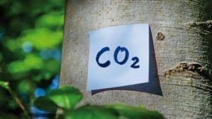 Nachhaltigkeit_Petair-shutterstock_1542211892_DOK-klein - Kopie (2)